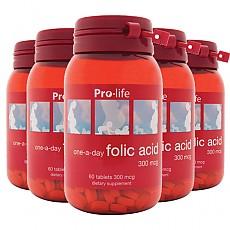 [프로라이프]엽산 Folic acid 60tab 6개
