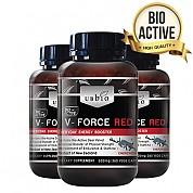 [유비바이오]V-Force 브이포스 레드(녹용,녹혈) 500mg 360tab 3개