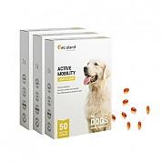 [펫아일랜드] ACTIVE MOBILITY 강아지 면역&관절영양제 50정 3개